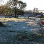 Erneut Frost in einigen Landesteilen