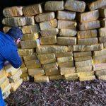 Jede Menge Marihuana beschlagnahmt