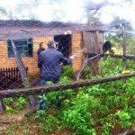 Gefangene Affen gerettet