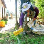 Dengue: Brasilien an erster Stelle in Amerika, Paraguay folgt