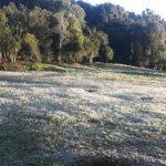 Die ersten Fröste und der kälteste Tag 2020