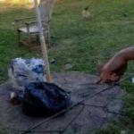 Neugeborenes zwischen Müllsäcken entdeckt