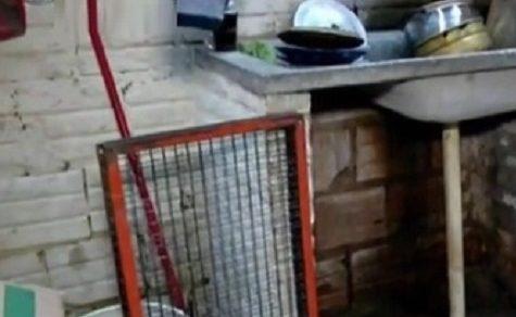 10-Jährige im Käfig eingesperrt, weil sie nicht lernen will