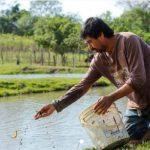 Sozialhilfe Fischzucht