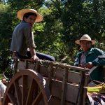 Corona-Krise: Von der Stadt zurück aufs Land