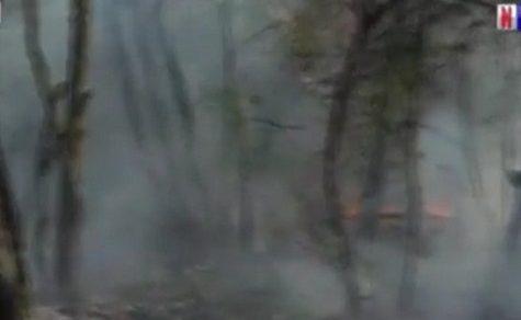 50.000 Hektar im Chaco verbrannt