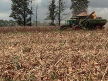 Die Landwirtschaft hat keine Schuld an der Dürre