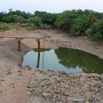 Der Mangel an Wasser infolge der Dürre ist dramatisch