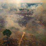 Der Rauch der Brände in Brasilien betrifft bereits 5 Nachbarländer