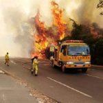 """""""90% der Brände sind gewinnorientiert"""""""