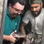 Bürgermeister aus dem Chaco ringt mit Schlange