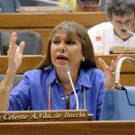Abgeordnete beschützen Angeklagte, bestrafen aber Kritiker