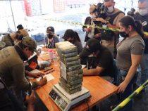 Rekordmenge an Kokain wächst weiter