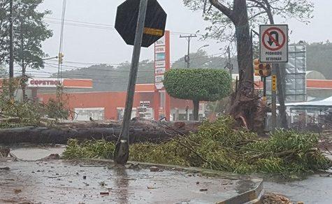 Orkan rauschte über Paraguay: Winde von bis zu 120 km/h aufgezeichnet