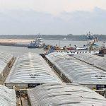 Niedrigwasser: Schifffahrt in extrem schwierigen Zeiten