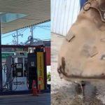 Wasser statt Benzin