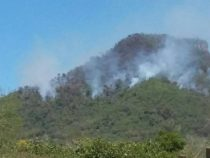 Wieder einmal viele Brände im Naturschutzgebiet Ybytyruzú