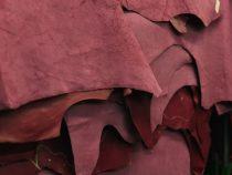 Abholzung des Chaco für mehr Leder