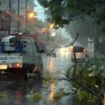 Sturm, umgestürzte Bäume und zahlreiche Beschwerden wegen Strom- und Internetausfall