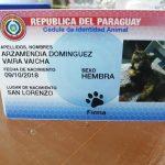 Der Tier-Personalausweis