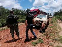Chaco: Viehdiebe auf der Flucht geschnappt
