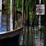 Das Hochwasser wird zurückkehren