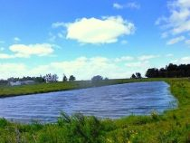 3 Kinder ertrinken in einer Lagune im Chaco