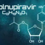Molnupiravir: Was es mit dem neuen Medikament gegen Covid-19 auf sich hat