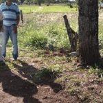 Bei Streit um Grundstück fallen Schüsse