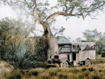 Der Chaco Krieg: Eventuell anders vorgestellt