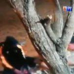 Überfall mit Messer: Räuber festgenommen und wieder freigelassen