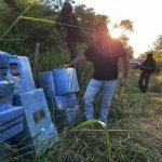 Chaco: Drogenhandel und Viehdiebstahl weiter auf dem Vormarsch