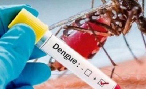 Infektologe schließt gleichzeitigen Ausbruch von Covid-19 und Dengue nicht aus