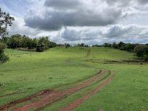 Deutsche Impfgegner zieht es nach Paraguay